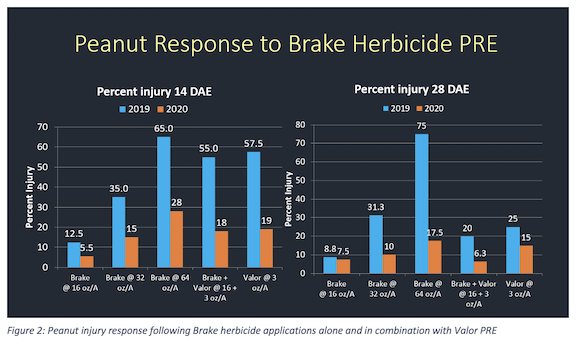 Figure 2: Peanut injury response following Brake herbicide applications alone and in combination with Valor PRE